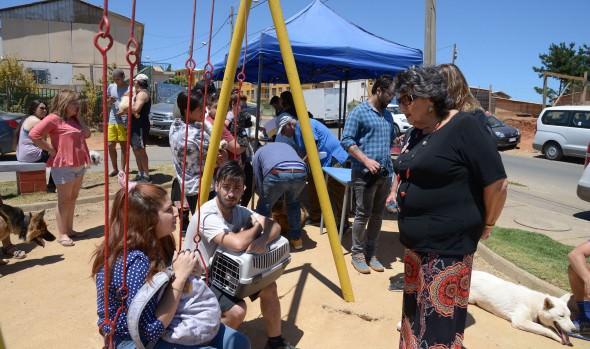 Municipio de Viña del Mar entregó apoyo social y contención a vecinos de Las Palmas Chilenas de Forestal Alto