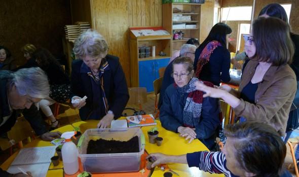Municipio de Viña del Mar implementa actividades y talleres a distancia