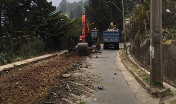 Municipio de Viña del Mar inició reposición de pavimento en dos vías de la ciudad
