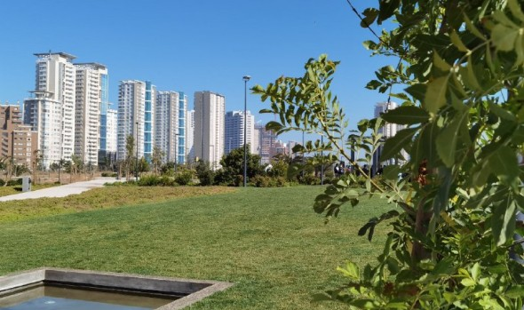 Viña del Mar cuenta con nueva área verde de 3 hectáreas para el esparcimiento familiar