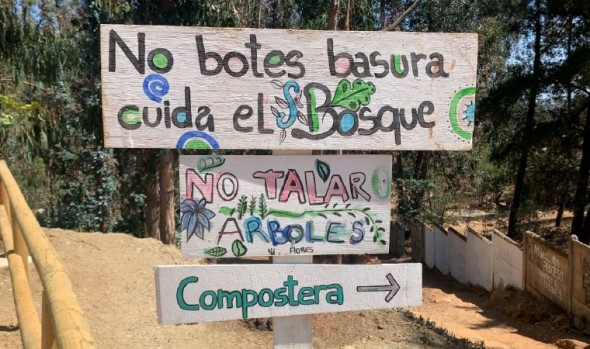 Nueva área verde sustentable inaugura municipio de Viña del Mar en Bosques de Santa Julia